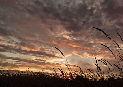 Sunrise-Over-Richmond-Farms